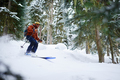 man skier rides freeride on powder snow in forest - PhotoDune Item for Sale