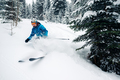 girl with special ski equipment is riding and jumping very fast in the mountain forest - PhotoDune Item for Sale