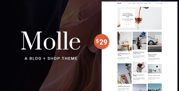 Molle - A Blog & Shop WordPress Theme