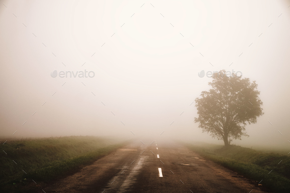 Foggy road - Stock Photo - Images