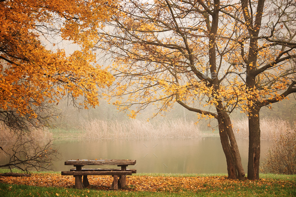 Bench autum park and lake - Stock Photo - Images