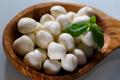 Mozzarella cheese - PhotoDune Item for Sale