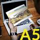 Pegnoli A5 Multipurpose Brochure - GraphicRiver Item for Sale