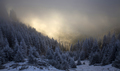 Trees covered with hoarfrost and snow in winter mountains - Holi - PhotoDune Item for Sale