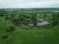 Top view of the water, swampy terrain and meadows - PhotoDune Item for Sale