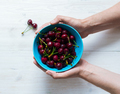 Female hands hold a bowl with ripe sweet cherry - PhotoDune Item for Sale