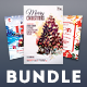 Christmas Flyer Bundle Vol.06 - GraphicRiver Item for Sale