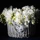 beautiful white flowers - PhotoDune Item for Sale