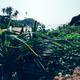 landscape on seaside - PhotoDune Item for Sale