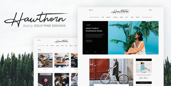 Hawthorn - A WordPress Blog & Shop Theme - Personal Blog / Magazine