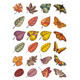 Leaves And Butterflies - GraphicRiver Item for Sale