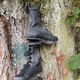 Old hiking shoes hung on a tree - PhotoDune Item for Sale