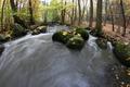 Maple leaf on boulder in stream - PhotoDune Item for Sale