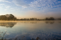 Early summer morning at the pond - PhotoDune Item for Sale