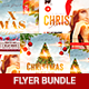 Merry Christmas Flyer Bundle - GraphicRiver Item for Sale