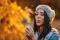 Making A Dandelion Wish - PhotoDune Item for Sale