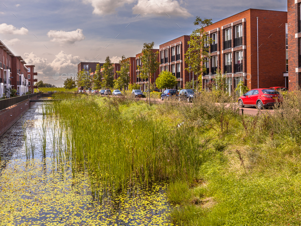 Urban street with ecological river bank - Stock Photo - Images
