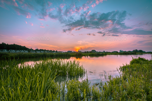 River forelands rhine - Stock Photo - Images