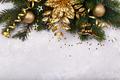 Golden poinsettia flower - PhotoDune Item for Sale