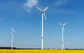 Blooming oilseed rape with wind energy plants - PhotoDune Item for Sale