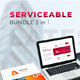 Free Download Serviceable Bundle Google Slides Template Nulled