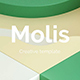 Molis Premium Powerpoint Template - GraphicRiver Item for Sale