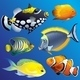 Realistic Exotic Marine Underwater Fauna Set - GraphicRiver Item for Sale