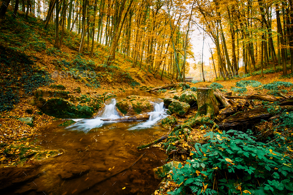 Autumn flowing stream - Stock Photo - Images