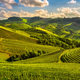 Langhe vineyards sunset panorama, Serralunga Alba, Piedmont, Ita - PhotoDune Item for Sale