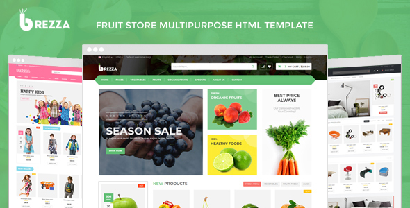 https://themeforest.net/item/brezza-fruit-store-multipurpose-html-template/22967537?ref=dexignzone
