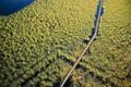 Aerial view swamp Viareggio - PhotoDune Item for Sale
