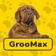 Groomax - Pet Grooming & Shop WordPress Theme - ThemeForest Item for Sale