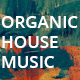 Stylish Organic House