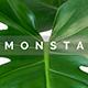 Monsta Minimal Design Google Slide Template - GraphicRiver Item for Sale