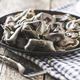 Squid ink tortellini pasta. - PhotoDune Item for Sale