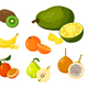 Tropical Exotic Fruits - GraphicRiver Item for Sale