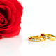 Red roses and gold rings on white_-3 - PhotoDune Item for Sale