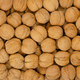 Walnuts background, pile of unshelled nuts - PhotoDune Item for Sale