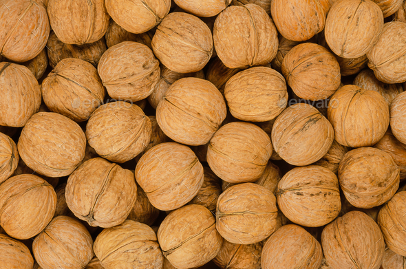 Walnuts background close up, pile of unshelled nuts - Stock Photo - Images