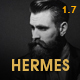 Hermes - Multi-Purpose Premium Responsive WordPress Theme - ThemeForest Item for Sale