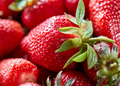 Closeup of ripe strawberries with green leaves. Organic freshly picked healthy berry. Food - PhotoDune Item for Sale