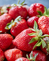 Closeup of juicy red strawberry berries with green stems. Organic healthy food - PhotoDune Item for Sale