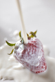 Ripe strawberries are watered with milk. Ingredients for a Healthy dairy dessert. Top view - PhotoDune Item for Sale
