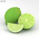 Lime - 3DOcean Item for Sale