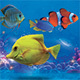 Aquarium Sea Land Flyer - GraphicRiver Item for Sale