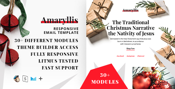 Amaryllis – Responsive Christmas Email Template + StampReady Builder - Email Templates Marketing