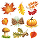 Free Download Autumn Items Nulled