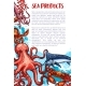 Vector Seafood and Fish Sea Product Market Poster - GraphicRiver Item for Sale