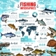 Vector Infographics for Fishing and Fish Seafood - GraphicRiver Item for Sale