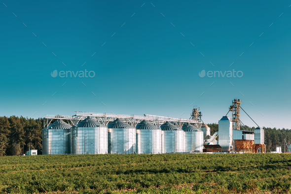 Granary, Grain-drying Complex, Commercial Grain Or Seed Silos In - Stock Photo - Images
